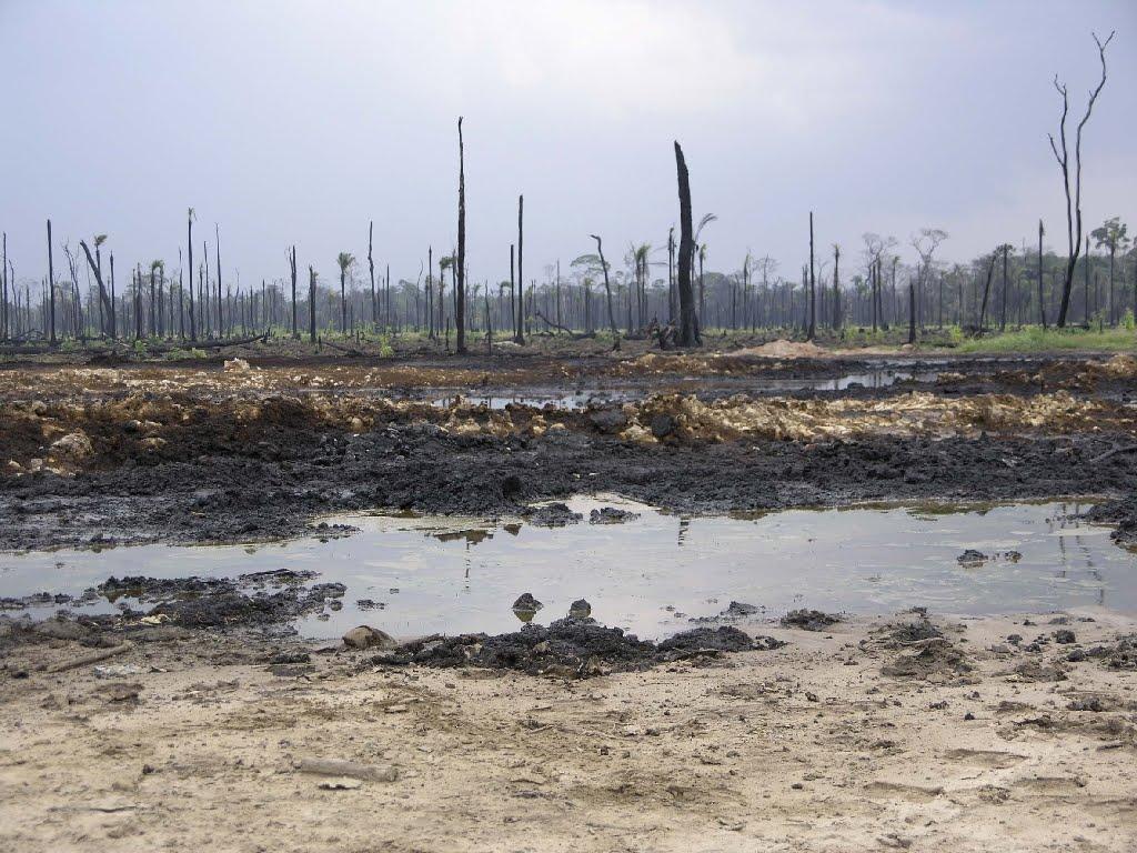 oil spill on land