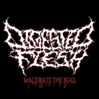 DIGESTED FLESH - Macerate The Soul (Ep 2010)
