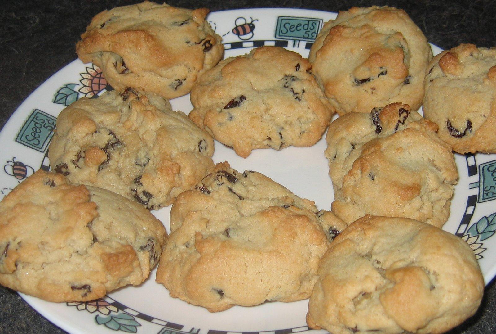 recettes  Biscuits à lavoine et aux raisins