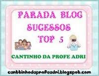 Meu 13* Selinho Parada Blog Sucessos Top 5