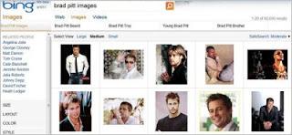 Bing Image Organization