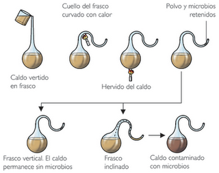 Experimento de Louis Pasteur