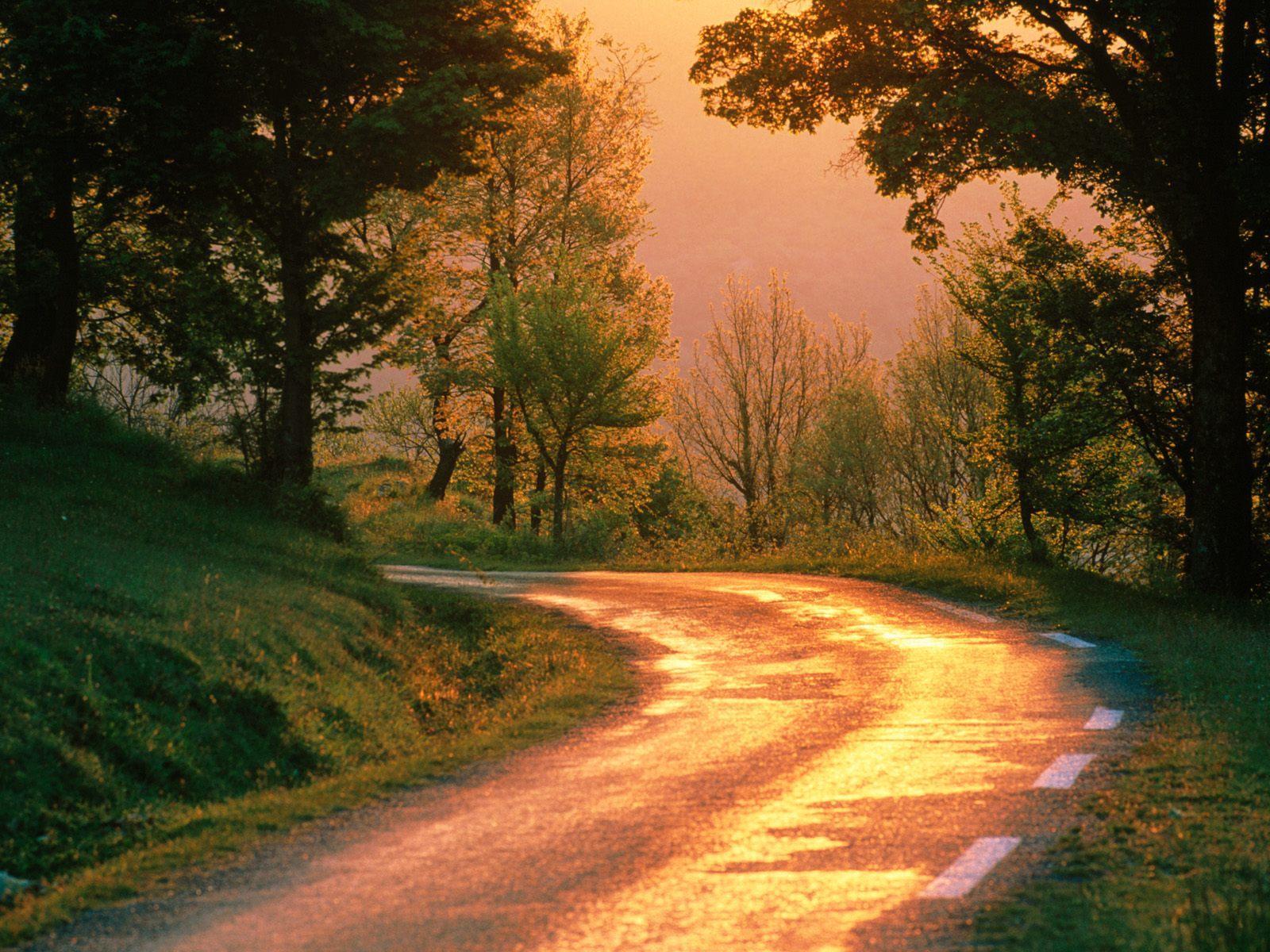 http://2.bp.blogspot.com/_pOW9LvKap60/TO0kjsNOxOI/AAAAAAAAADo/26ryvluz7Dg/s1600/golden_road%252C_france.jpg