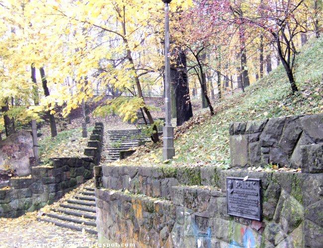 zdjęcia park Bednarskiego