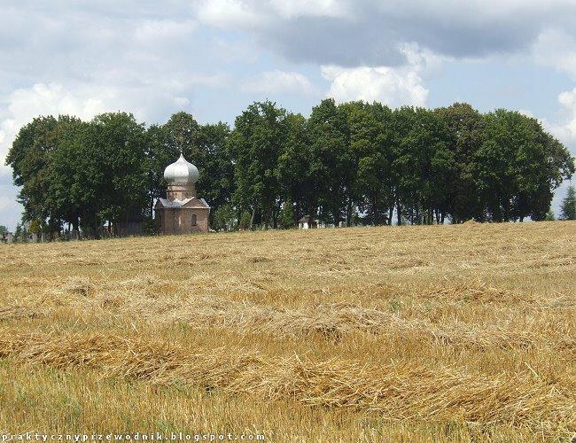 Cerkiew Świętego Równego Apostołom Włodzimierza w Brzeźnie