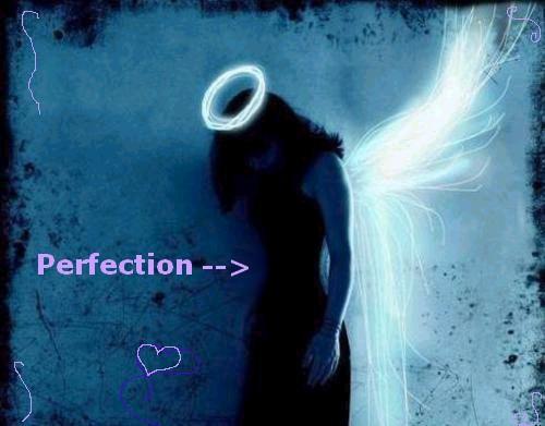 lo que se ecnuentra de verdad Perfection