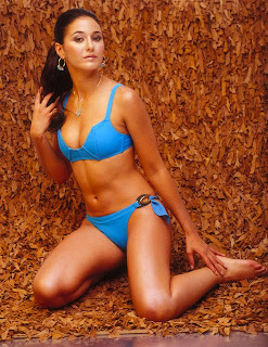Emmanuelle Chriqui in a blue bikin hot picture