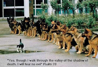 latest bible Verse Psalm 23 with dogs and duck sexy photo
