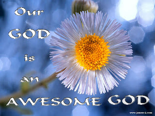 Our god is an Awesome god with beautiful yellow white flower nature background photo gallery