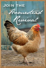 Visit &#39;Homestead Revival&#39;