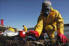 Recopilación de muestras producidas por el mar