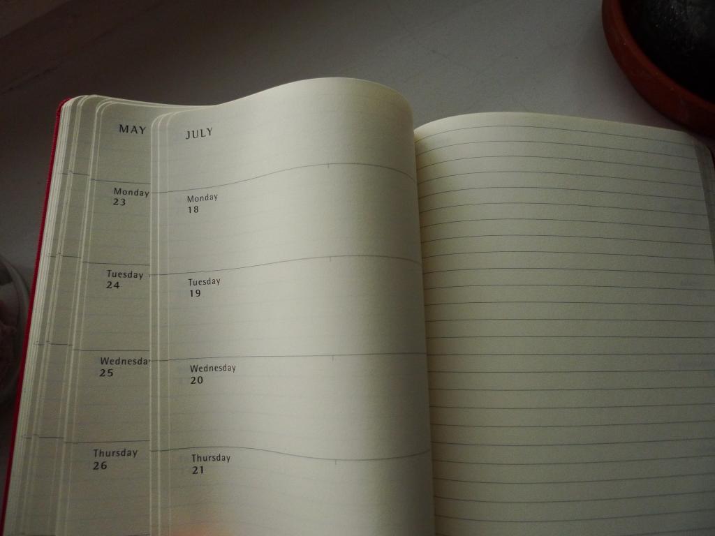 moleskine kalendarz tydzień na stronie