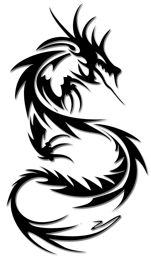 Dessin De Dragon Pour Tatouage - Tatouage Dragon 123RF