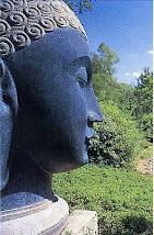 Sutras y Meditacióon