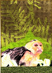 Monkeying Around ATC Swap