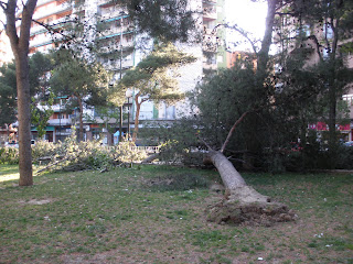 Cierzo parque Pignatelli Zaragoza