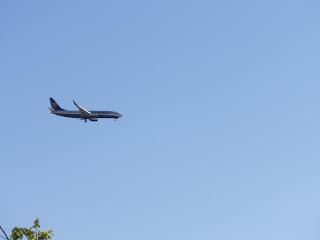 avión Ryanair Zaragoza