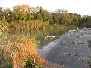 Balsa azud de Urdán río Gállego Zaragoza