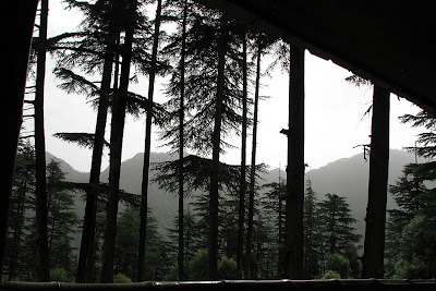 A view from a cottage at Dhanaulti of the forest covered foot hills of Himalayas
