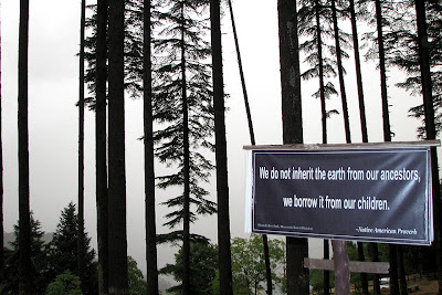 The proverbs on the sign posts along the different forest trails at Dhanaulti are inspiring