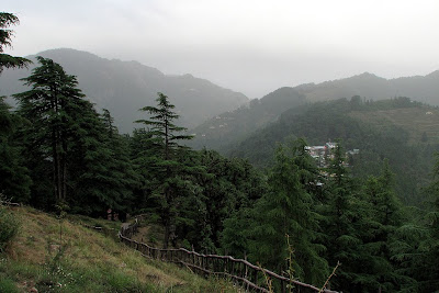 A view from one of the many view points in the Dhanaulti eco-park