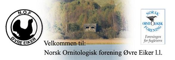Nof Øvre Eiker lokallag`s blogg