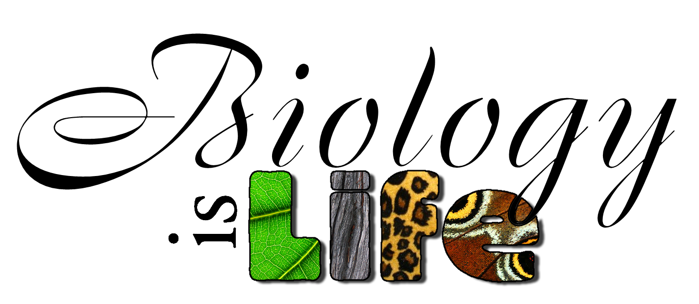 the biology project Biology topics what do you want to learn about animals biologists cells cloning the environment evolution the biology project, university of arizona.
