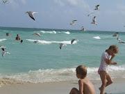 Miami South Beach (dscf )