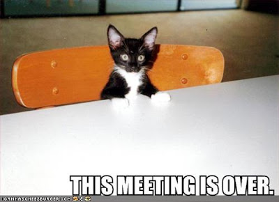 http://2.bp.blogspot.com/_pc5YDjTcfFU/S5Jk5eqEOlI/AAAAAAAAVjY/CTlOptBQ5ms/s400/funny-pictures-kitten-ends-meeting2.jpg