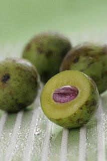Adalah tanaman yang berasal dari kepulauan Indonesia dan Malaysia.