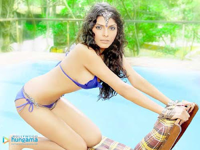 hot actress wallpapers. Bollywood Actress Wallpapers