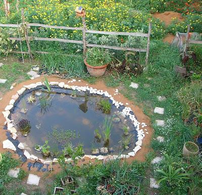 il giardino di anna 03 15 09