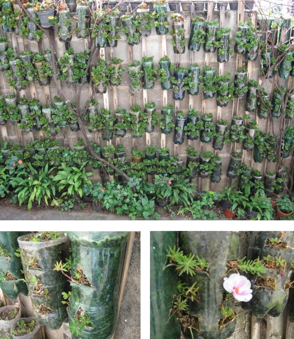cerca de madeira para jardim passo a passo:Jardim Vertical De Garrafas Pet