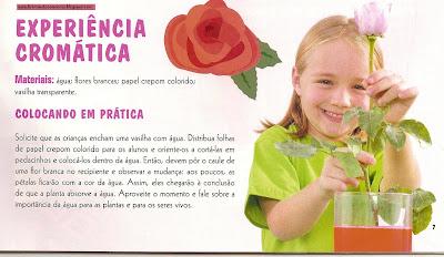 artes0002 Sugestões de Atividades manuais PRIMAVERA para crianças