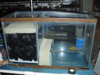 Goldfish garage a two car fishroom diy wet dry filter for Diy bio balls