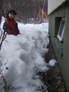 Vielä riittää lunta, ja kellarin ikkunakin ollut koko talven auki...