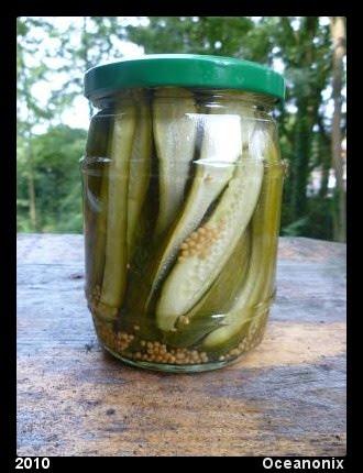 De moestuin en recepten van nonix juli 2010 - De komkommers ...