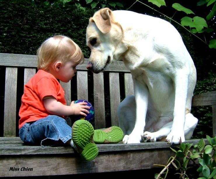 [dog+and+child]