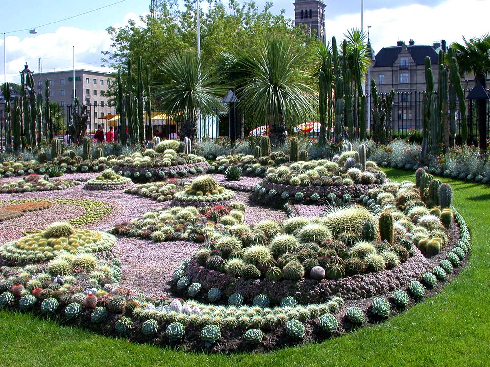 Paradis express the cactus garden carl johans park - Jardines con cactus y piedras ...