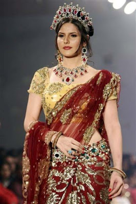 Zarine Khan in saree at