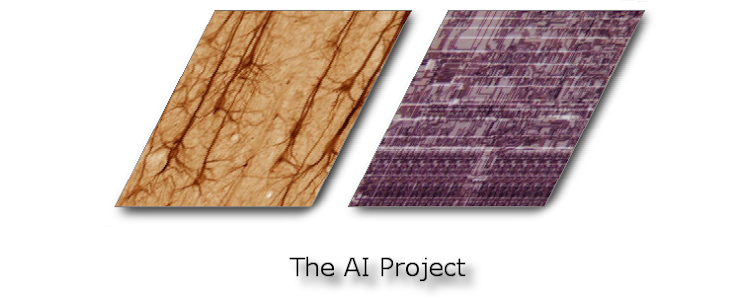 The AI Project