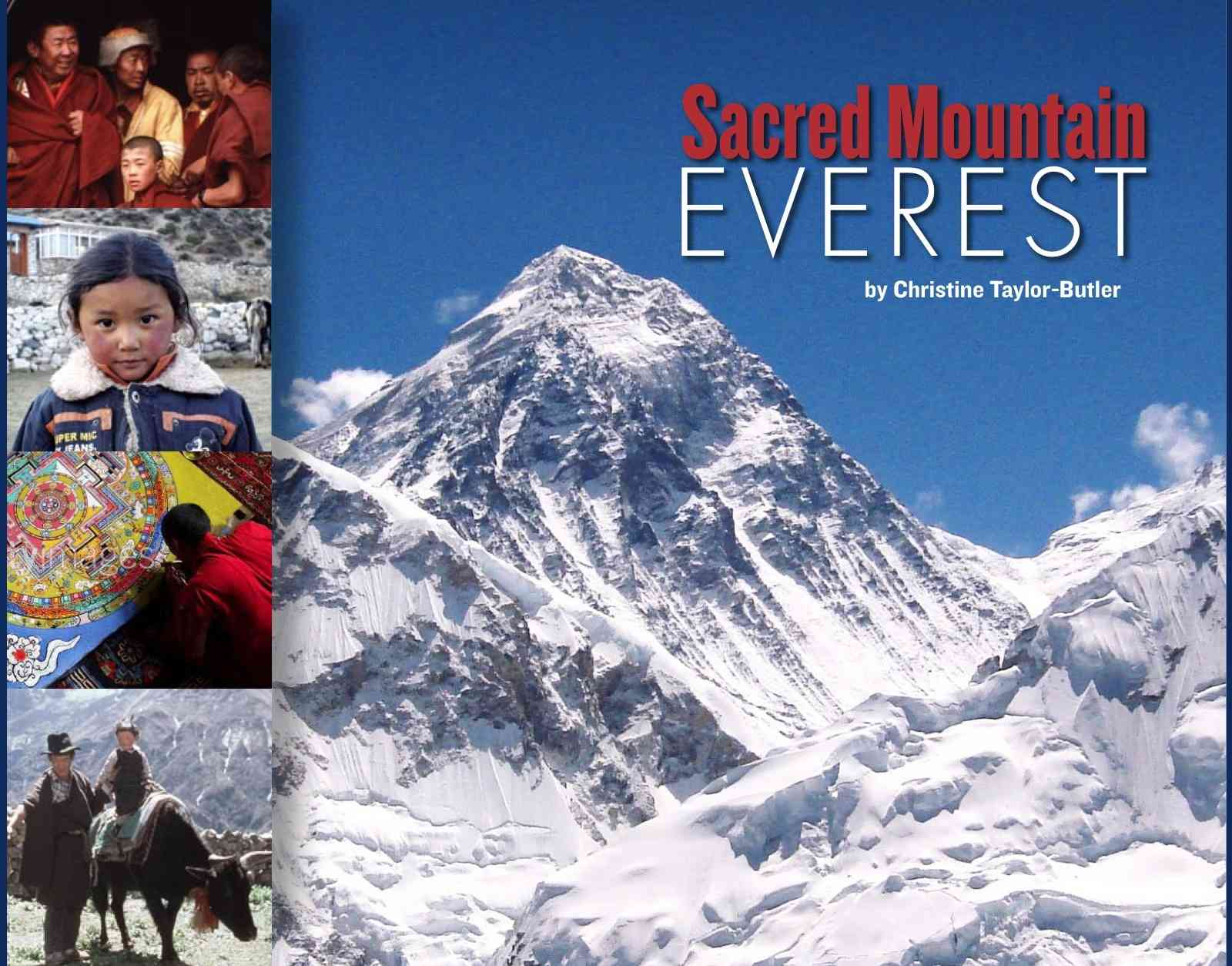 mount everest case study summary