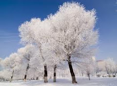 A zima też może być piękna