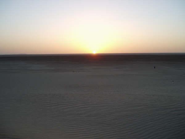 ...porque ver la verdad es difícil, pero contarla mucho más... es predicar en el desierto.