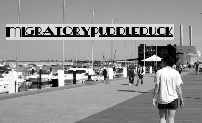 Migratory Puddleduck