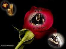 """Premio """"VIVIR"""""""