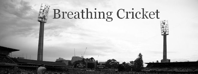 BreathingCricket