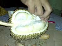 Durian from Pasir Pandak, Borneo