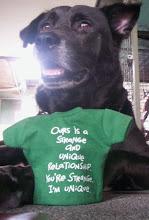 Woof, I translate barkings!