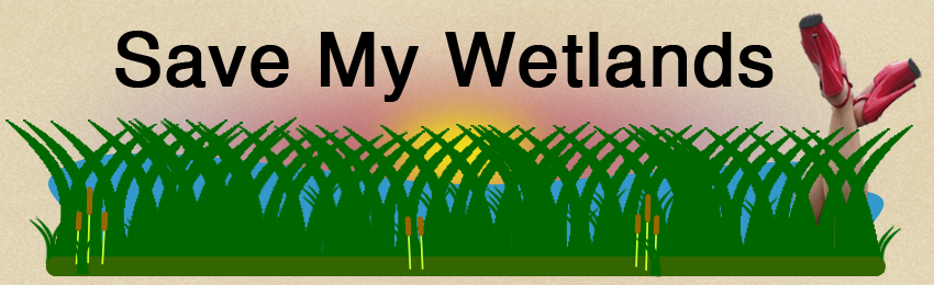 Save My Wetlands